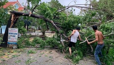 [ẢNH] Bão số 5 gây mưa to, gió giật mạnh tại Thừa Thiên- Huế, Đà Nẵng