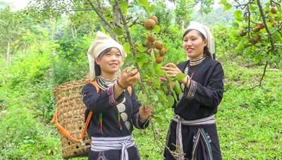 Tuyên Quang: Phụ nữ xã Hồng Thái chung sức xây dựng nông thôn mới