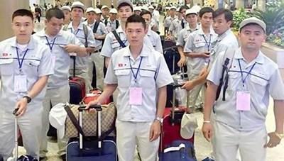 Lao động đi làm việc ở nước ngoài: Cảnh giác với việc tổ chức 'chui'
