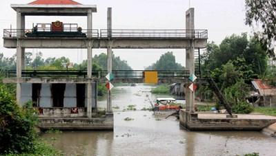 Đồng bằng sông Cửu Long: Đối diện với đợt xâm nhập mặn mới