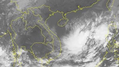 Áp thấp nhiệt đới gây mưa dông, gió giật cấp 8-9