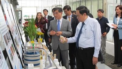 Học tập kinh nghiệm của Hàn Quốc trong xây dựng NTM gắn với phát triển nông nghiệp công nghệ cao