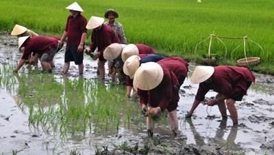 Hội thảo phát triển du lịch sinh thái bền vững gắn với nông nghiệp, nông thôn