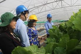 Xuân Lộc (Đồng Nai): Xây dựng huyện nông thôn mới kiểu mẫu