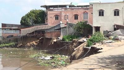 Báo động tình trạng sạt lở đê điều và suy thoái rừng ngập mặn
