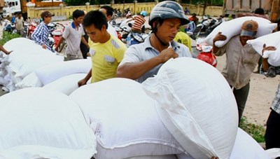 Hỗ trợ gạo cho người nghèo vùng biên giới