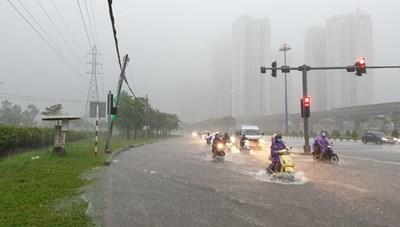 Sài Gòn ngập khắp nơi, cây đổ đè người đi xe máy