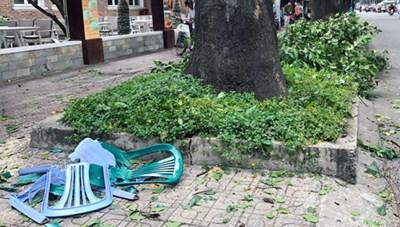 TP HCM: Cành cây đè trọng thương người trên vỉa hè