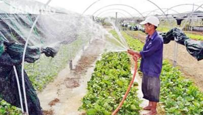 Vai trò, trách nhiệm của hội nông dân ngày càng rõ nét