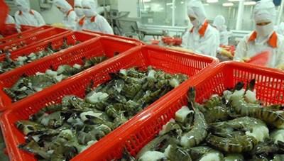 Xuất khẩu tôm sang EU, Mỹ dự báo tăng trưởng tốt