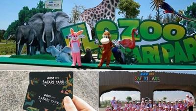 FLC Zoo Safari Park Quy Nhơn - Điểm đến không thể bỏ lỡ trong hành trình khám phá 'xứ Nẫu'