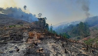 Quảng Nam: Chuyển hồ sơ vụ cháy rừng huyện Đông Giang sang cơ quan Công an