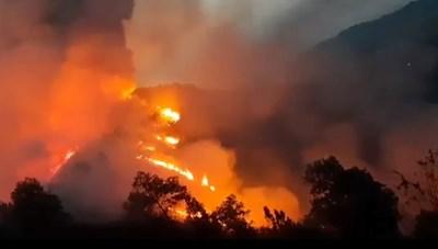 Hà Tĩnh: Trắng đêm dập lửa ngăn cháy rừng lan rộng