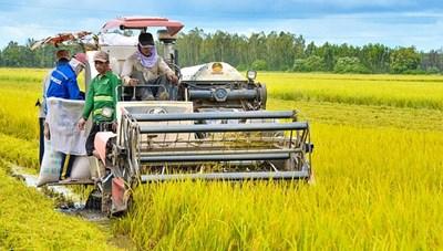 Nông nghiệp chậm chạp chuyển đổi số