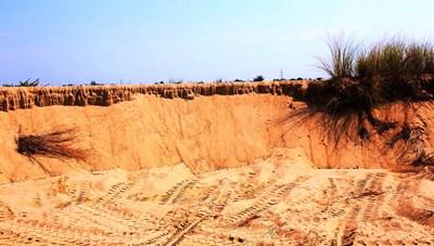 Khai thác cát trái phép ở bờ sông Thu Bồn