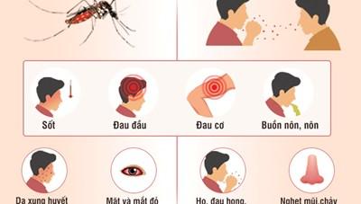 Phân biệt triệu chứng của bệnh sốt xuất huyết và Covid-19