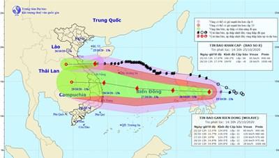 Bão số 8 sắp đổ bộ vào miền Trung, bão số 9 đang mạnh thêm