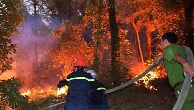 Nghệ An: Tiếp tục xảy ra cháy rừng tại huyện Diễn Châu
