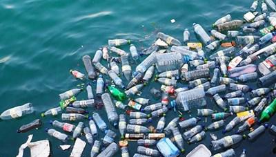 Tìm kiếm ý tưởng Vì một đại dương không nhựa