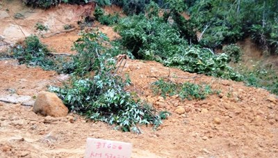 Quảng Nam: Mưa lớn gây sạt lở đường khu vực biên giới