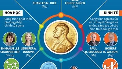 [Infographics] Theo dõi toàn cảnh mùa giải Nobel năm 2020