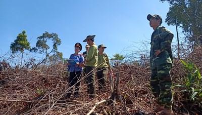 Quảng Nam: Điều tra, làm rõ vụ phá rừng xã Trà Giác
