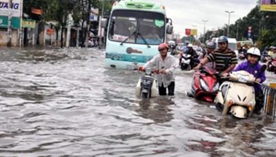 Ứng phó tình huống thiên tai, mưa lũ lớn bất thường