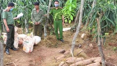 Quảng Bình: Thu giữ gần 500 kg thuốc nổ cùng nhiều đầu đạn 