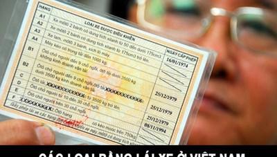 Bộ Công an báo cáo Quốc hội dự luật về quản lý giấy phép lái xe 12 điểm/năm