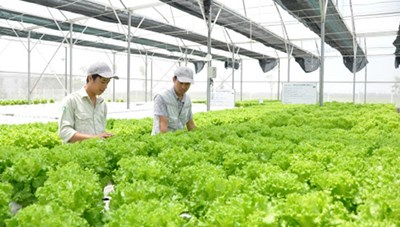 Nghệ An: Nhân dân đóng góp hơn 9.200 tỷ đồng xây dựng nông thôn mới