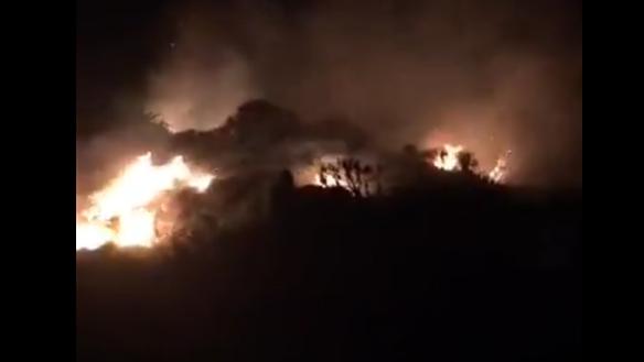 Quảng Nam: Khống chế vụ cháy rừng trong đêm trên núi Bàn Than