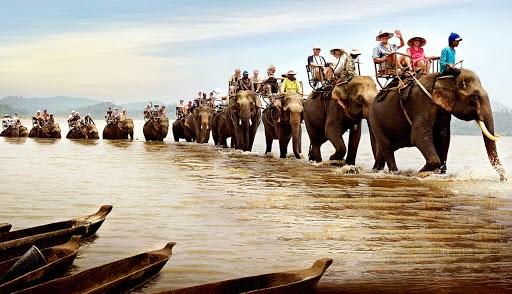 Tây Nguyên không chỉ có voi