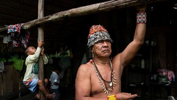 Sống và chết trong rừng rậm Amazon
