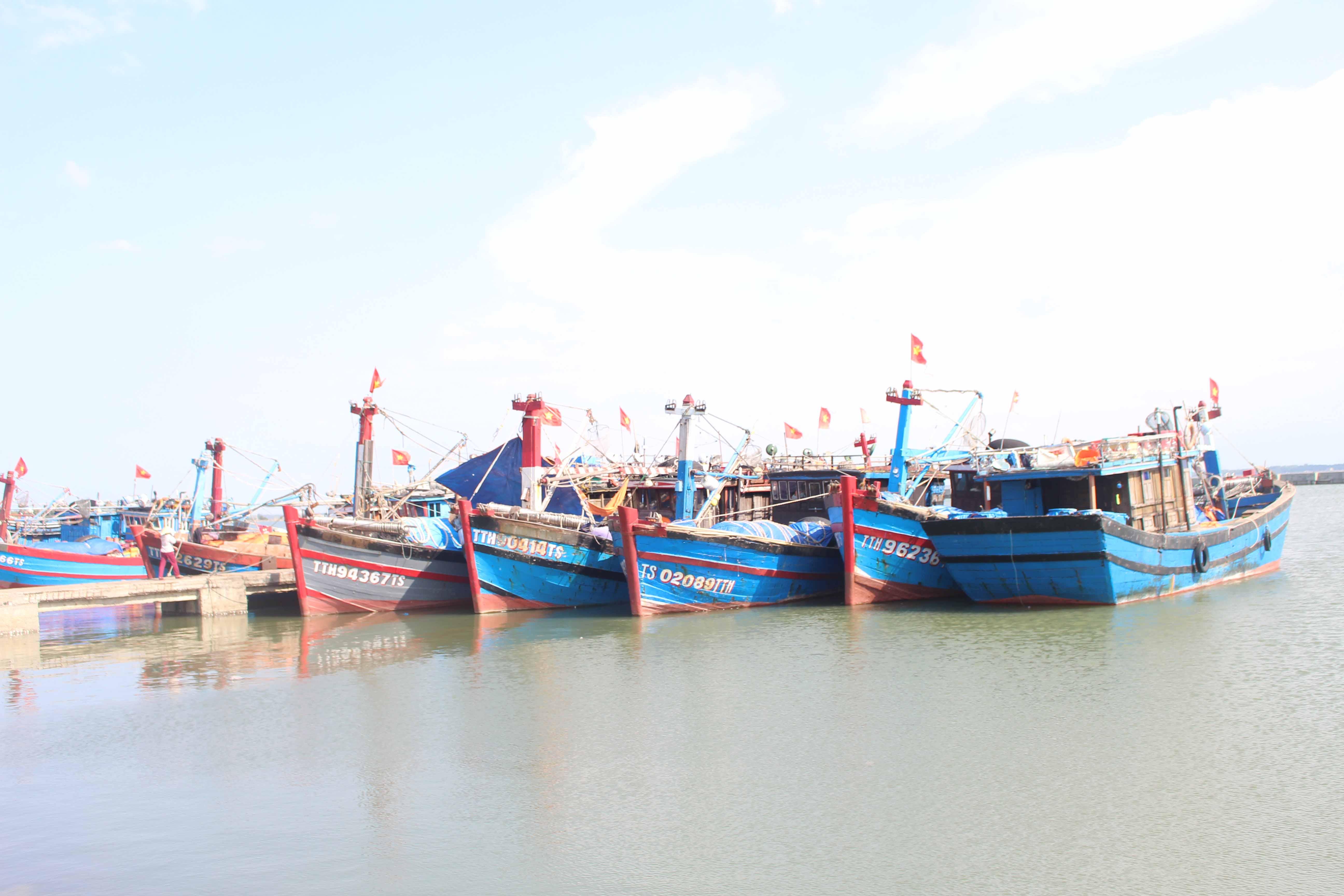 Các địa phương tích cực kêu gọi tàu thuyền vào nơi neo đậu an toàn.