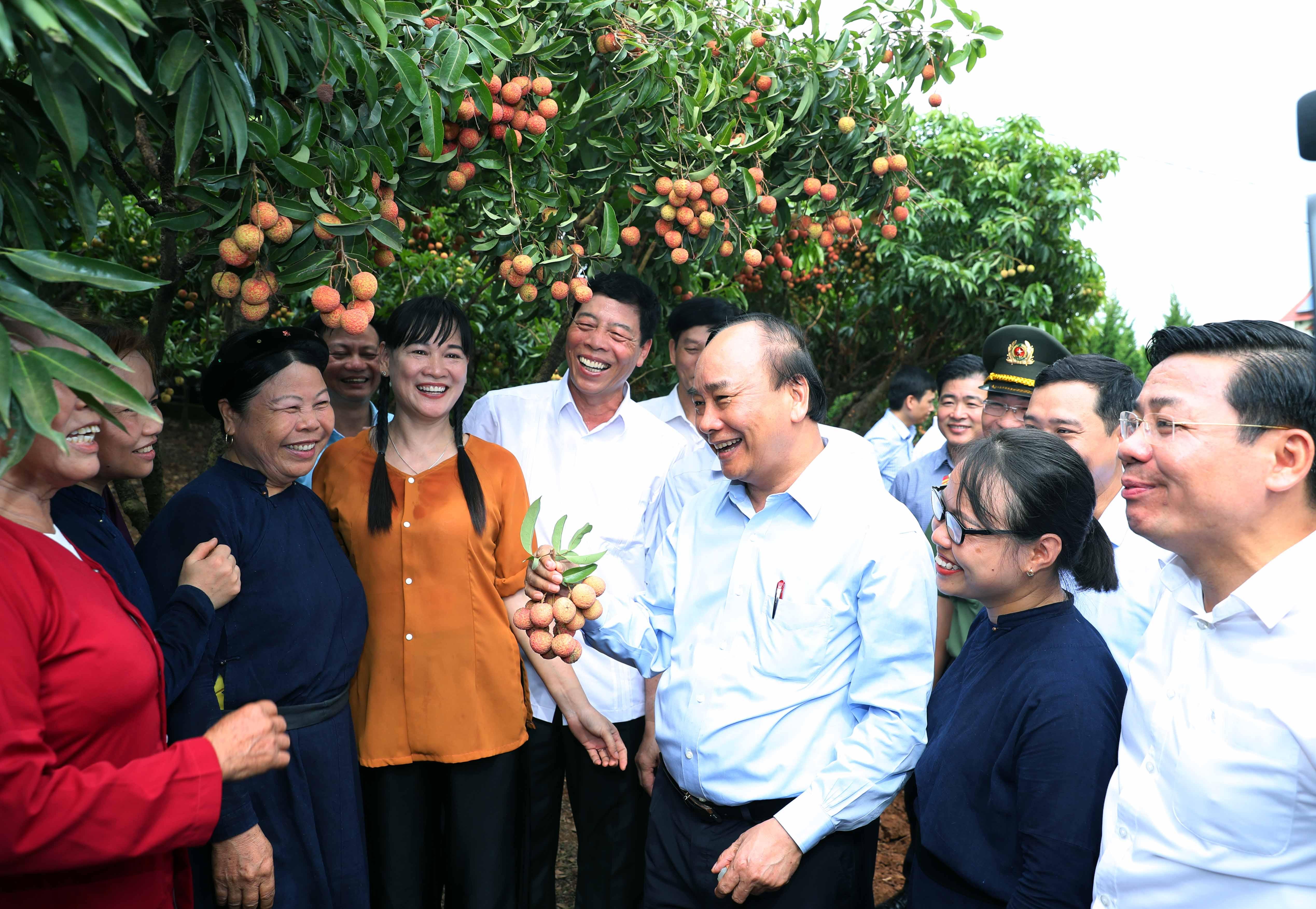 """Thủ tướng Nguyễn Xuân Phúc thăm """"Vườn quả Bác Hồ"""" tại xã Quý Sơn, huyện Lục Ngạn, tỉnh Bắc Giang, ngày 6/6/2020. (Ảnh: VGP)."""