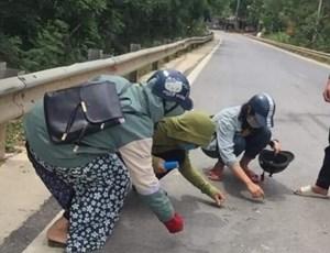 Hà Tĩnh: Nhóm học sinh nhặt đinh rơi vãi trên đường giữa trời nắng như đổ lửa
