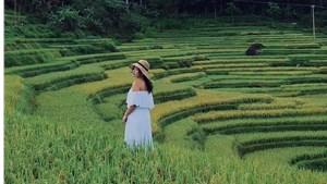 Bí kíp khám phá các địa điểm hot khi 'bao la Việt Nam' tại các tỉnh miền Trung