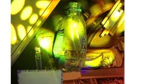 Đắk Nông: Phát hiện nhóm nam thanh nữ tú 'bay lắc' trong quán karaoke