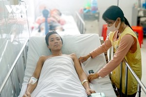 Bệnh nhân bị rắn hổ chúa cắn được cứu sống hy hữu