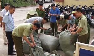 Lạng Sơn bắt giữ gần 350 kg nguyên liệu thuốc bắc nhập lậu