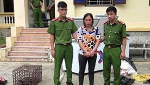 Nghệ An: Bắt đối tượng cùng 3 cá thể khỉ đã chết