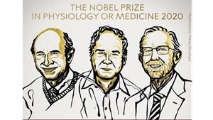 Khép lại mùa Nobel trong đại dịch