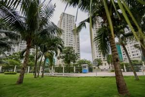 TP Hồ Chí Minh huy động các nguồn lực xã hội phát triển công viên, cây xanh