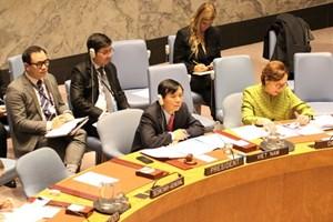 Việt Nam chủ trì phiên họp về củng cố hòa bình ở Tây Phi