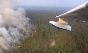 Nga huy động quân đội tham gia chữa cháy rừng tại Siberia