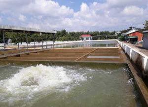 Đà Nẵng: Khẩn cấp ứng phó tình trạng thiếu nước sinh hoạt