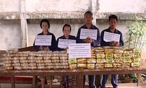 Hà Tĩnh: Phá đường dây vận chuyển ma túy xuyên quốc gia