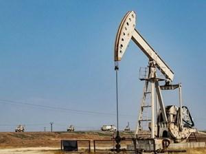 Tổng thống Mỹ phê duyệt kế hoạch 'giữ giếng dầu' ở Syria