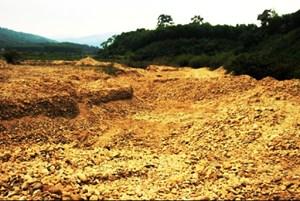 Dân bức xúc tình trạng khai thác cát dọc bờ sông Cái