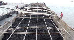 Tạm giữ 800 tấn than không rõ nguồn gốc